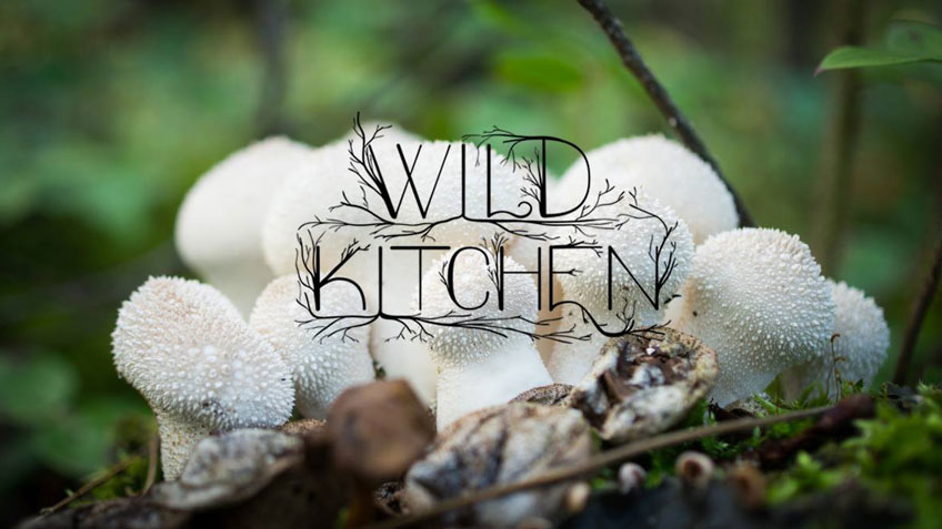 wild-kitchen-kakisa-sept-2016-82